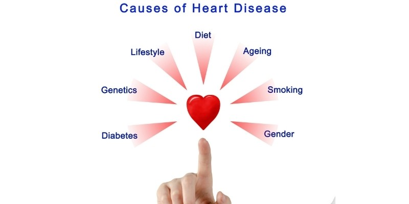 Reduces Risk of Heart Disease